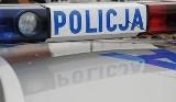 W gminie Samborzec Łupem złodzieja padło kilkadziesiąt drzewek