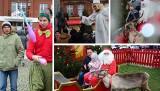 Prawdziwy renifer na Jarmarku Bożonarodzeniowym w Gniewkowie [zdjęcia]