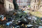 Widok na wysypisko, czyli wielki kłopot ze śmieciami w Bydgoszczy [zdjęcia]