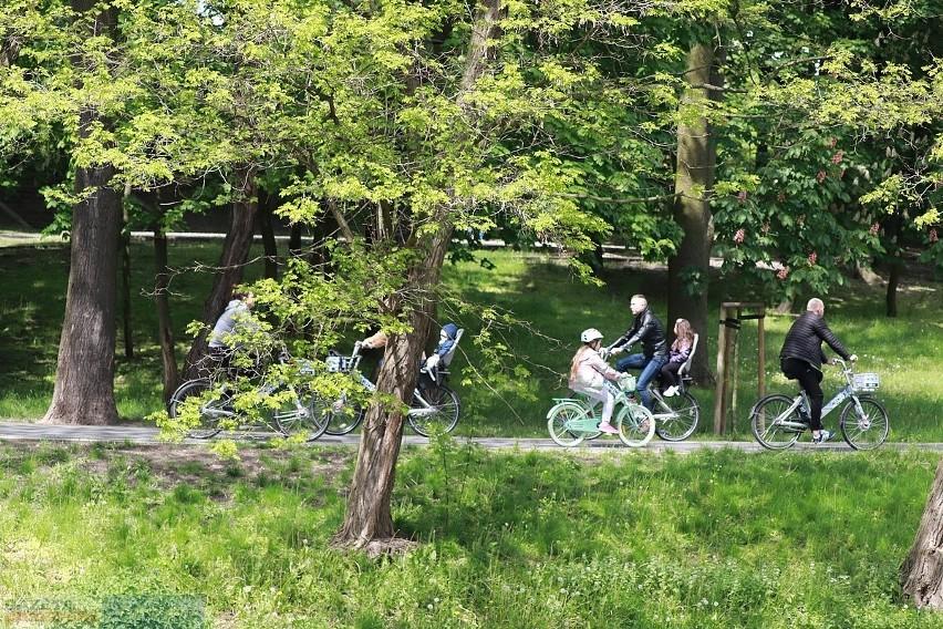 Park im. Sienkiewicza we Włocławku zostanie przebudowany na...