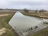 Sytuacja powodziowa w Tarnobrzegu monitorowana. Jakie są prognozy?