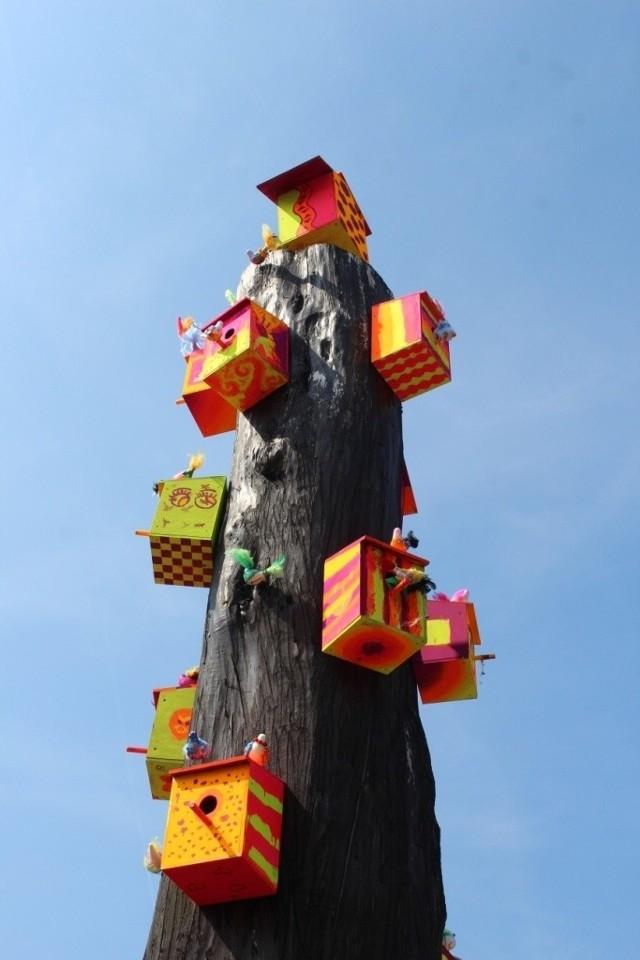 """Kolorowe Drzewo w Redzie (woj. pomorskie) – lipa drobnolistna, wiek ok. 60-70 lat, obwód 1,6 m, wysokość 4-5 m. Zgłoszone przez Miejski Dom Kultury w Redzie.Kolorowe Drzewo znajduje się na ulicy Puckiej na tyłach straży pożarnej. Jest obumarłe, jednak dzięki sztuce zyskało nowe życie. Na drzewie powstała niezwykła instalacja artystyczna – kolorowe domki dla ptaków i ptaszki, stworzone przez dzieci i młodzież podczas warsztatów ekologicznych zorganizowanych w Domu Kultury. Instalacja powstała podczas projektu """"Drzewo"""", którego celem było zagospodarowanie zapomnianych miejsc w Redzie. Jednocześnie praca nad instalacją edukowała uczestników, a teraz edukuje oglądających, przypominając o potrzebie troski o dobrostan przyrody a szczególnie ptaków."""