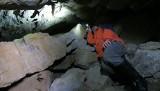 Speleolodzy liczą nietoperze na Podkarpaciu. Sprawdzili stary tunel i sztolnie, w których zimują te ssaki [ZDJĘCIA]