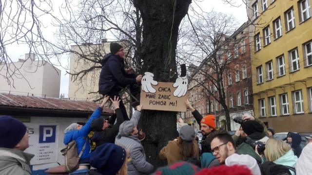 22.02.2020 r. Protest przeciw wycince kasztanowców w Katowicach na ulicy Raciborskiej.Zobacz kolejne zdjęcia. Przesuwaj zdjęcia w prawo - naciśnij strzałkę lub przycisk NASTĘPNE