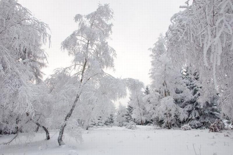 Nic na razie nie zapowiada takiej zimy.