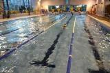 Pływanie. Z Unii do szkoły mistrzostwa