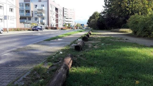 Drewniane kłody uniemożliwiają nielegalne parkowanie na skraju parku Grabiszyńskiego. Widoczne na zdjęciach samochody zaparkowane po drugiej stronie ulicy stoją na chodniku, gdzie jest zakaz parkowania.