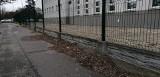 Podlegająca miastu szkoła od jesieni nie sprząta wokół swojego terenu