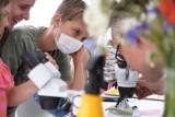 Dni Torunia 2021 nad Wisłą! Botaniczne warsztaty dla dzieci