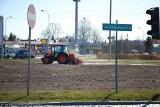 Pola słonecznikowe w Białymstoku wyrosną w trzech piętrach. Już obsiewają łąki kwietne (zdjęcia)