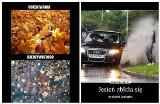 Koniec lata MEMY. Najlepsze śmieszne obrazki na przyjście jesieni. Złota polska jesień oczami internautów [23.09.2021]