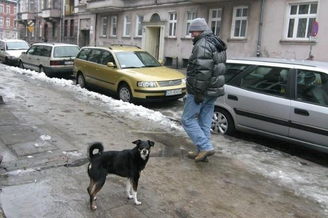Psy brudzące na chodnikach to duży problem dla mieszkańców słupskich ulic Solskiego i Wyspiańskiego.