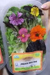 Kwiaty z przydomowego ogródka to nie tylko ozdoba do wazonu, ale smakowite i piękne zioło, składnik sałatki