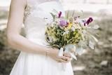 Tyle dostają pary młode na wesele w kopertach - kwoty. Mamy przykłady z ostatnich imprez