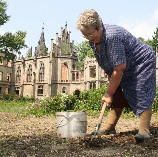 Łucja Adamiak uprawia sałatę w miejscu, gdzie były kiedyś fontanny i ogrody. Może nowy właściciel pałacu sprawi, że w Kopicach będzie jak za dawnych lat - mówi.