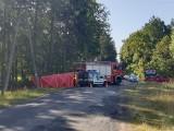 Tragedia pod Strzelnem. W miejscowości Miradz samochód uderzył w drzewo, cztery młode osoby nie żyją
