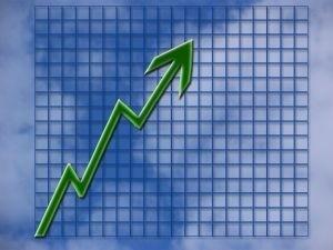 W 2011 roku przeciętne zatrudnienie było o 1,5 procent wyższe niż w analogicznym okresie ubiegłego roku i wyniosło 11.6552 osoby.