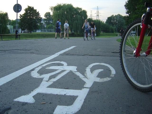 Droga rowerowa nad Wisłokiem w Rzeszowie.
