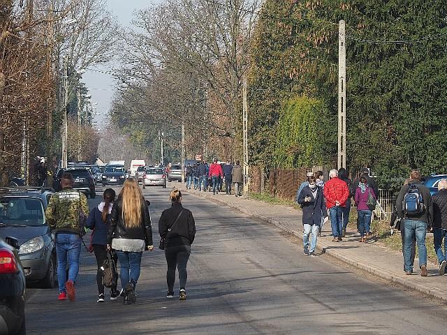 Pierwotnie największa w Polsce licytacja koni miała się odbyć 31 marca br. w stadninie w Wiączyniu Dolnym (powiat łódzki wschodni). Przyjechały na nią setki hodowców i właścicieli stadnin z całego kraju. Samochodów z przyczepami było tak dużo, że cała wieś została zablokowana. Jednak aukcja pod gołym niebem nie doszła do skutku, ponieważ – z powodu zagrożenia epidemiologicznego – została zablokowana przez inspektorów sanepidu.