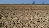Więcej gruntów rolnych dla nierolników? Prace nad ustawą trwają