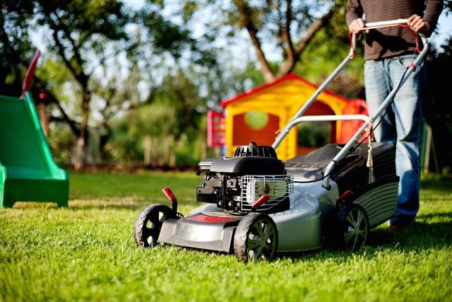Trawnika nie można kosić zbyt często, ani zbyt rzadko. Zbyt wysoko, ani zbyt nisko. Podpowiadamy, jak to robić prawidłowo  i co jeszcze jest ważne.