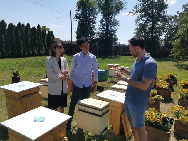 We wtorek Maciej Bursztein pokazywał pasiekę Dafi kontrahentom z Japonii, którzy przyjechali do Kielc na biznesowe rozmowy. Goście byli zachwyceni pomysłem.