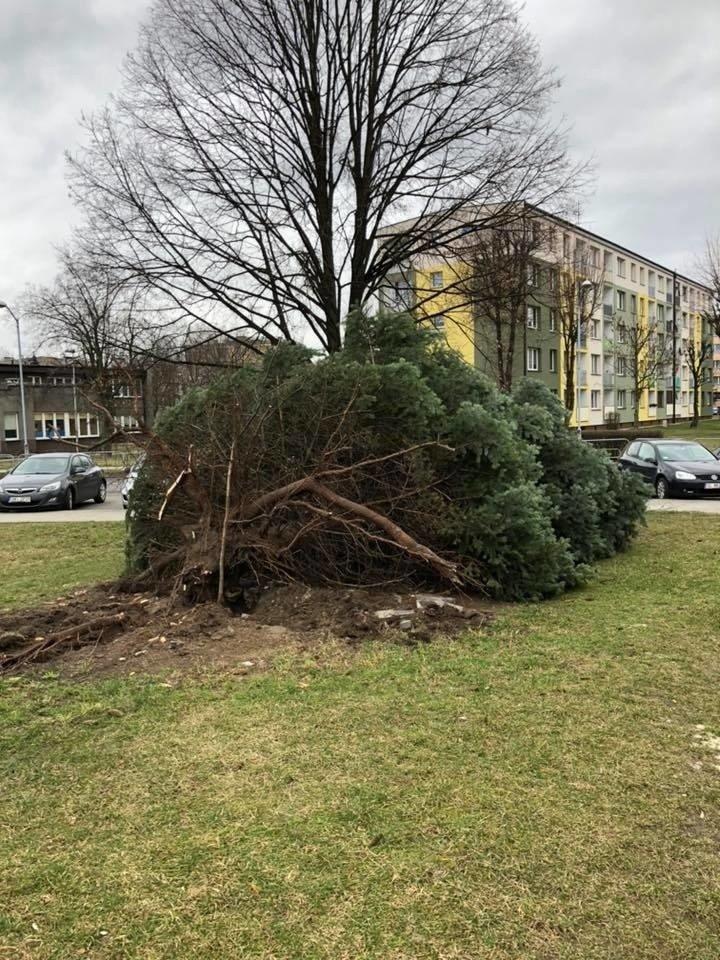 Wichury W Rudzie Slaskiej Polamane Drzewa Uszkodzone Dachy
