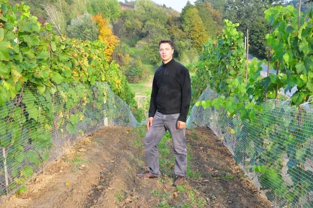 Winnica Marcelego Małkiewicza w Górach Wysokich koło Sandomierza ma hektar powierzchni, ale wkrótce zostanie powiększona.