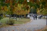 Wszystkich Świętych w Częstochowie. Cmentarz Komunalny już od kilku dni odwiedzają częstochowianie