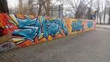 Napisy na murach w Słubicach. Sztuka, czy może wandalizm? [ZDJĘCIA]