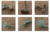Skarby na budowie S5. Co tam znaleźli archeolodzy? (ZDJĘCIA)