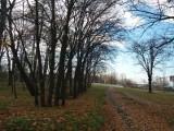 Nowe parki we Wrocławiu. Są konsultacje, nie ma pieniędzy