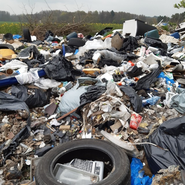 Czytelniczka sfotografowała śmieci na trasie pomiędzy Zieloną Górą a Kargową.