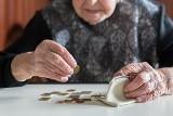 Najwyższa emerytura w Polsce. To gigantyczna stawka! Ile wynosi? Będziesz zaskoczony! Rekordowa suma jest w Kujawsko-Pomorskiem