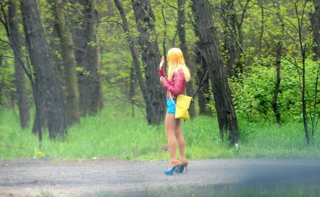 Mieszkańcy nie chcą prostytutek przy drogach i apelują do policji