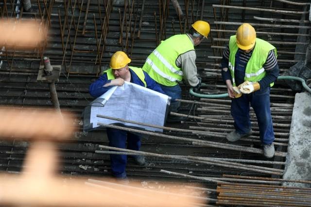 Wciąż najbardziej poszukiwani będą pracownicy produkcyjni i okołoprodukcyjni, kierowcy, sprzedawcy czy budowlańcy.
