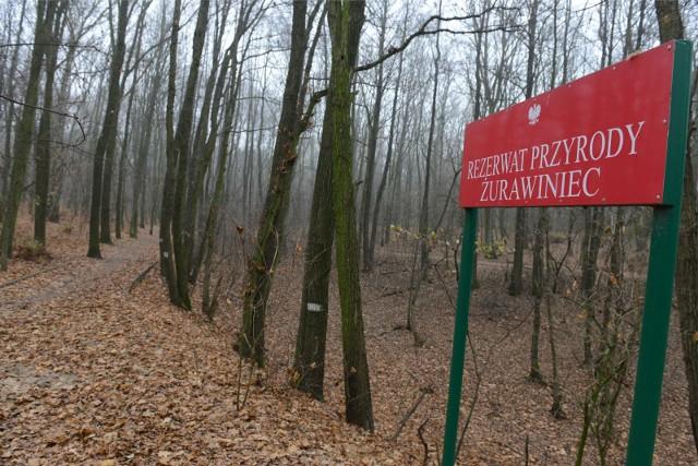 Do nietypowego zdarzenia doszło w niedzielę, 14 marca, na terenie rezerwatu Żurawiniec.