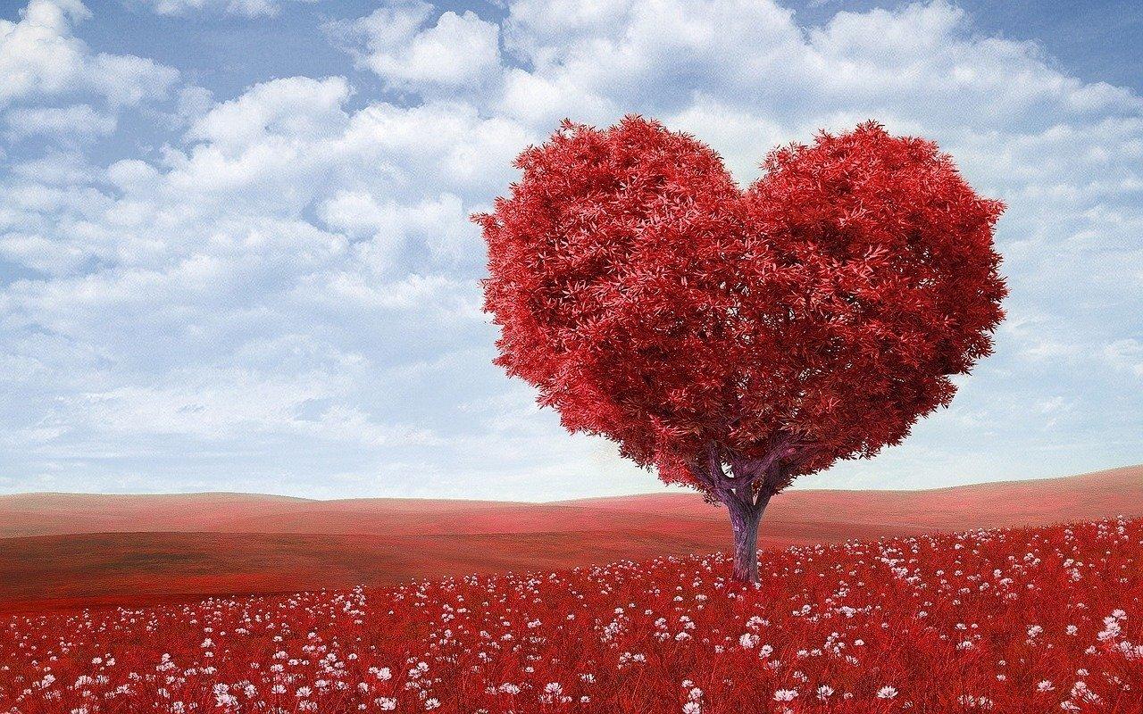 Dla dziewczyny miłosne wiersze Miłosne życzenia,