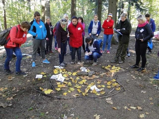 """Warsztaty dla nauczycieli """"O lesie w lesie – czyli drewno w roli głównej"""" odbyły się na terenie Nadleśnictwa Bielsko."""