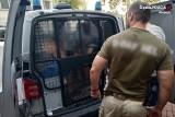 Kłobucka policja zatrzymała trzech mężczyzn, którzy wyspecjalizowali się w okradaniu dyskontów