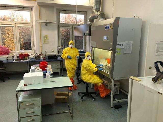 W ciągu ostatniego tygodnia w naszym regionie wykonano 417 testów na obecność koronawirusa