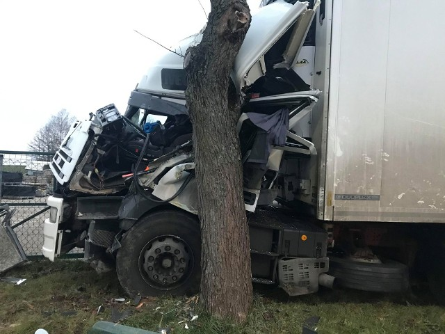 Kierujący cięzarówką stracił panowanie nad pojazdem i uderzył w drzewo. Cudem uniknął śmierci w zmiażdżonej kabinie.