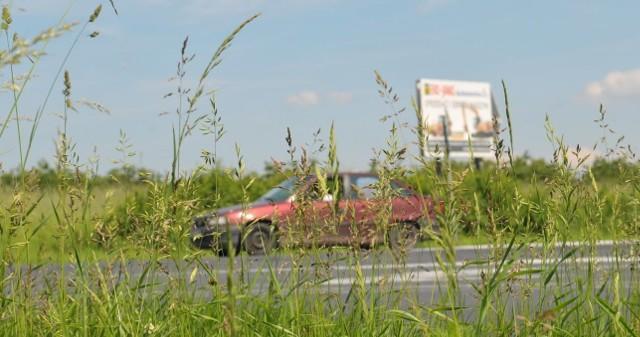 Wysoka trawa z okolic skrzyżowania zniknie do... przyszłej środy.