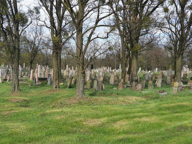Cmentarz żydowski przy ulicy Wschodniej na co dzień jest zamknięty.
