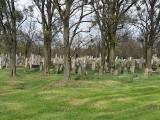 Cmentarz żydowski przy ulicy Wschodniej pozostaje zamknięty. Otwiera się go jedynie dla turystów