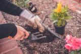 Jesteś właścicielem kwiaciarni albo sklepu ogrodniczego? Pomożemy Ci przetrwać w czasie koronawirusa