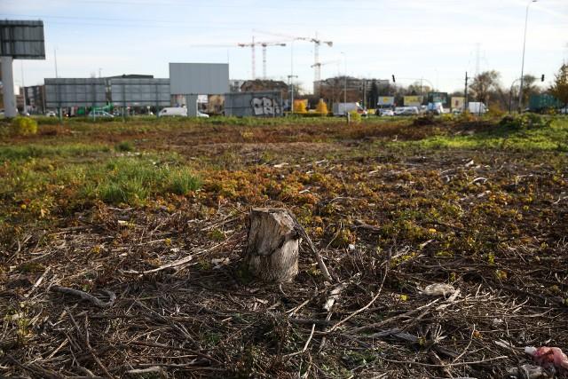Tereny pomiędzy parkiem Lotników, AWF, al. Pokoju i ul. Nowohucką. Kiedyś rosło tu dużo drzew. Wciąż nie wiadomo, czy przeznaczeniem terenu będzie zieleń, czy zabudowa biurowa