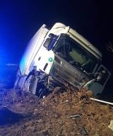 W Nadolnej Kolonii samochód ciężarowy z niewiadomych przyczyn zjechał do rowu