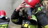 W gminie Goszczyn koło Grójca zapalił się samochód osobowy, strażacy ugasili płonące auto