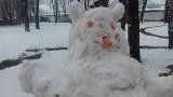 Zima w Oświęcimiu. Pięknie i biało. Na razie tak zostanie